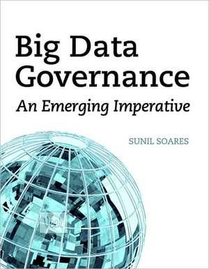 Big Data Governance imagine
