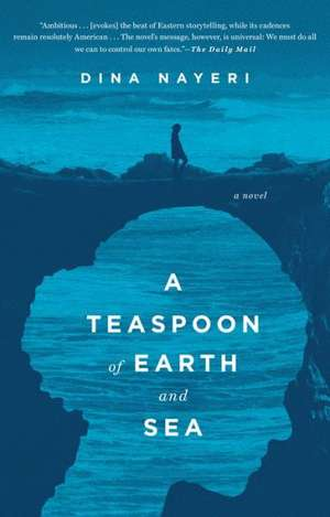 A Teaspoon of Earth and Sea de Dina Nayeri