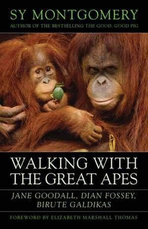 Walking with the Great Apes imagine
