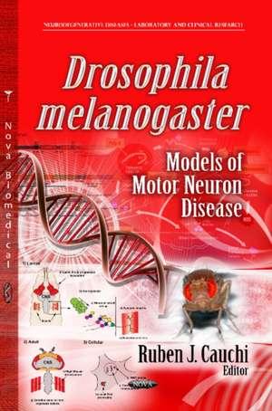 Drosophila Melanogaster Models of Motor Neuron Disease