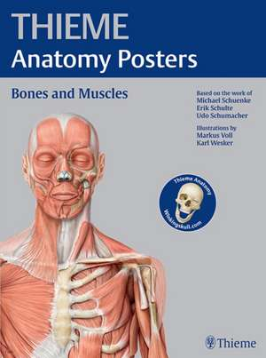 Thieme Anatomy Poster, Latin Nomenclature
