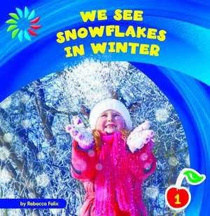 We See Snowflakes in Winter de Rebecca Felix