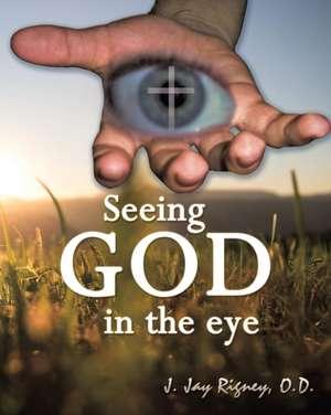 Seeing God in the Eye de O. D. J. Jan Rigney