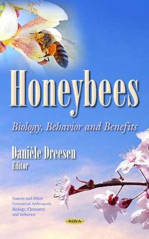 Honeybees imagine