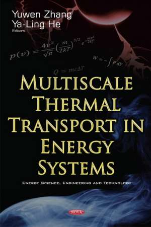 Multiscale Thermal Transport in Energy Systems imagine