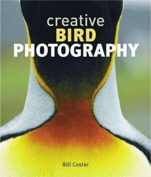Creative Bird Photography imagine