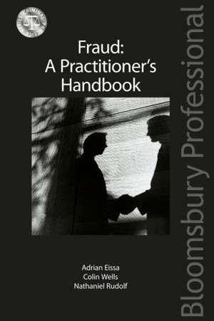 Fraud: A Practitioner's Handbook imagine