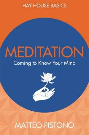 Meditation de Matteo Pistono