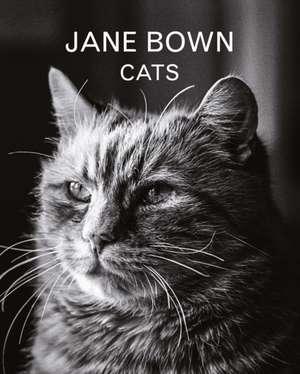 Jane Bown:  Cats de Jane Bown