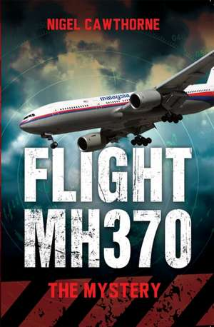 Flight MH370 imagine