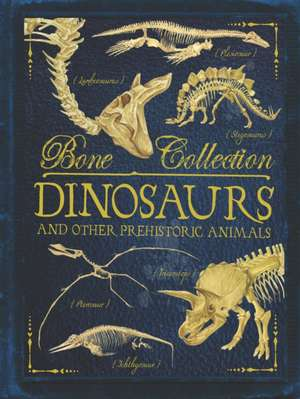 Bone Collections: Dinosaurs