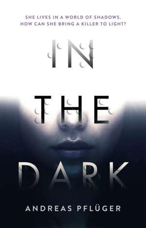 In the Dark de Andreas Pfluger