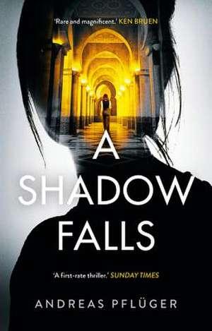 A Shadow Falls de Pfluger Andreas Pfluger