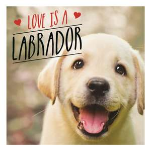 Love is a Labrador de Charlie Ellis