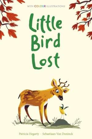 Hegarty, P: Little Bird Lost de Patricia Hegarty
