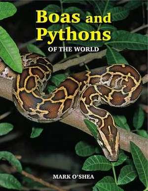 Boas and Pythons of the World imagine