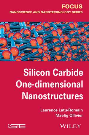 Silicon Carbide One–dimensional Nanostructures