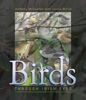 McGeehan, A: Birds de Julian Wyllie