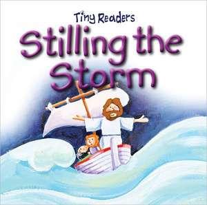 Stilling the Storm