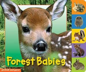 Gunzi, C: Forest Babies