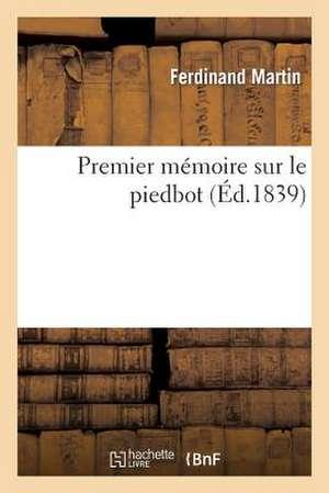 Premier Memoire Sur Le Piedbot