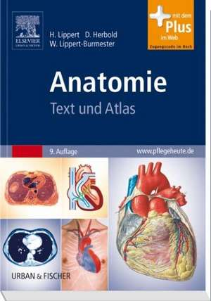 Anatomie de Herbert Lippert