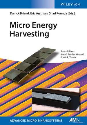 Micro Energy Harvesting de Danick Briand