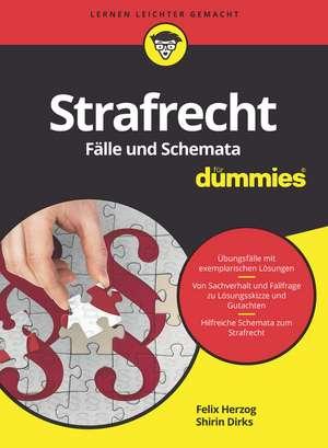 Strafrecht Fälle und Schemata für Dummies de Felix Herzog