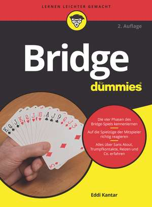 Bridge fur Dummies