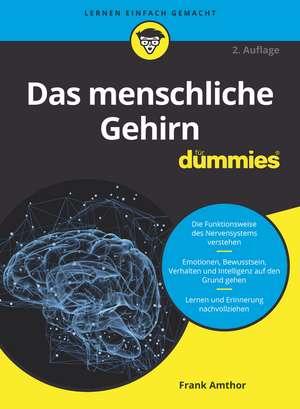Das menschliche Gehirn für Dummies de Frank Amthor