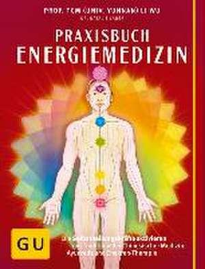 Praxisbuch Energiemedizin de Natalie Lauer