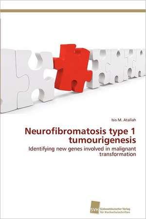 Neurofibromatosis Type 1 Tumourigenesis