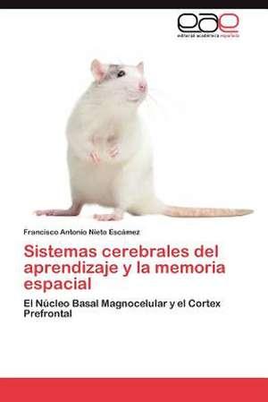 Sistemas Cerebrales del Aprendizaje y La Memoria Espacial