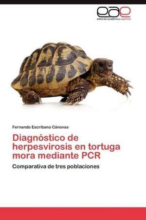 Diagnostico de Herpesvirosis En Tortuga Mora Mediante PCR