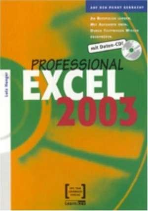 Excel 2003 Professional de Lutz Hunger