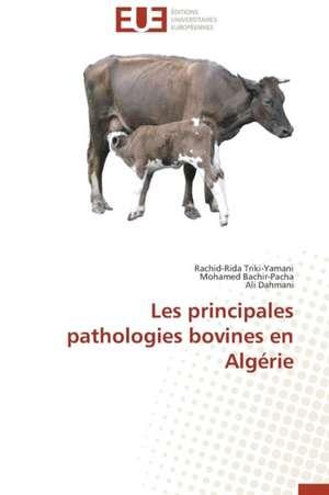 Les Principales Pathologies Bovines En Algerie