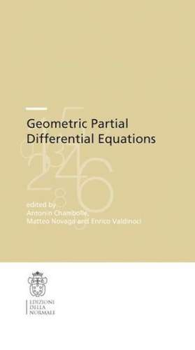 Geometric Partial Differential Equations de Antonin Chambolle