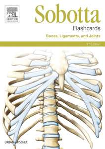 Sobotta Flashcards Bones, Ligaments, and Joints
