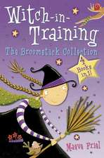 Witch-in-training: The Broomstick Collection