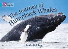 The Journey of Humpback Whales:  Practice Book 4
