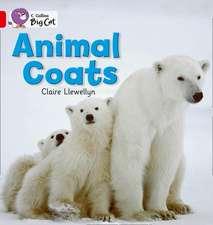 Animal Coats Workbook