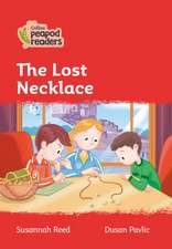 Level 5 - The Lost Necklace