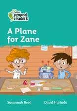 Level 3 - A Plane for Zane