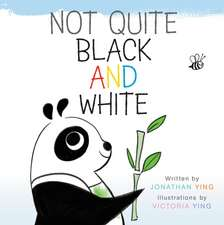 Not Quite Black and White Board Book