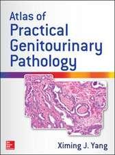 Atlas of Practical Genitourinary Pathology