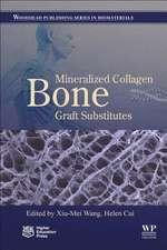 Mineralized Collagen Bone Graft Substitutes