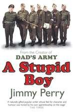 A Stupid Boy