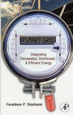 Smart Grid: Integrating Renewable, Distributed and Efficient Energy