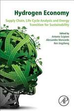 Hydrogen Economy: Supply Chain, Life Cycle Analysis and Energy Transition for Sustainability