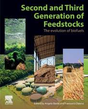 Second and Third Generation of Feedstocks: The Evolution of Biofuels